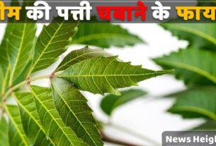 Benefits of Neem Leaves in Hindi