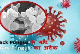 white fungus cases in india