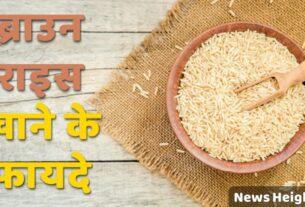 brown rice benefits in Hindi
